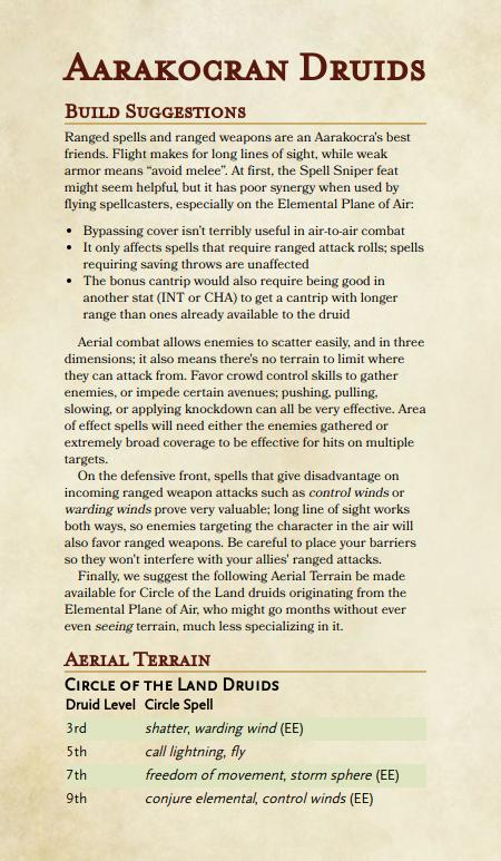 Aarakocran Druids – Heroes Rise